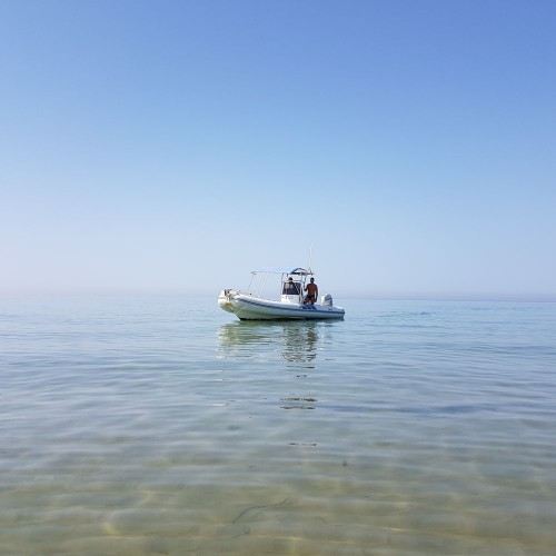 DISCOVER MALTA ON BOARD OF A RUBBER BOAT WITH SKIPPER EXPERT