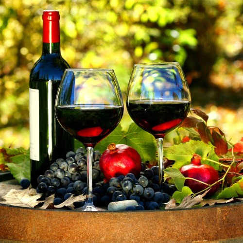 """WINE TOUR VISIT OF """"ARMOSA CANTINA"""" AND SCICLI"""